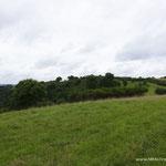 Dauner Landschaft III
