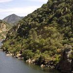 Eindrücke vom Douro, aus dem Zug fotografiert
