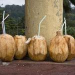 Pausenpunkt mit Kokosnuss