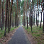 Eurovelo 10 on the Curonian Spit, Lithuania