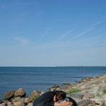 Stundenlanges Warten auf die Fähre, die uns auf die nächste Insel bringt, Saareema, Estland