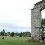 Lindenhof near Haapsalu, Estonia