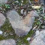 Herz im Wald