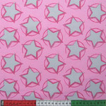 stars in the middle rosa