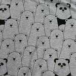 Eisbären auf grau