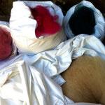... und auch das gefärbte Vlies. Fertig! Die Wolle ist bereit zur weiteren Verarbeitung.