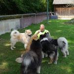 Horst der Hundeflüsterer