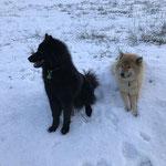 Dana und Amy am 26.12.2018 im Winterurlaub in der Steiermark
