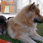 Ylvi mit Mama am 28.8.2016