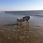 Ylvi im Wasser am 27.5.2017