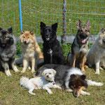 Amy und Ihre Freunde im Urlaub in Kärnten