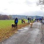 Treffpunkt in Albstadt-Burgfelden