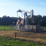 Texas-oil