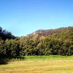 """Der Kalksandsteinfelsen Hohenstein, ein Hihlight der MTB Tour, von unten, dem Gasthaus """"Pappmühle"""" aus gesehen"""