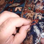 Motten-Schäden beseitigen