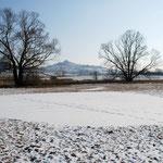 Wiesbrunnen Januar 2012, nach Baggerarbeiten (Bild: Ralf Wegerer)