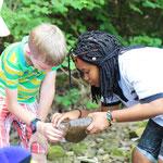 Aktivitäten mit den Salamandern im Goldersbach