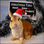 Christmas Time (Original Mix) - Daniel Kaiser & FreeSpirit - 25. November 2016