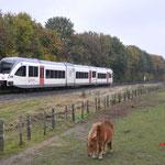 5 November 2016: Reuver / 358 Veolia als trein vanuit Tegelen naar Roermond.