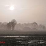 26 November 2010: Helmond