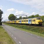 17 September 2016: Boxtel / 876 + NSR 469 + 466 + 449 te Boxtel onderweg als trein 828202 van Vlissingen naar Eindhoven.