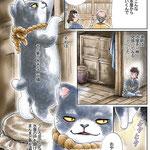 猫と南瓜 古典怪談 化け猫