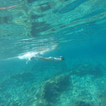 Urlaub an der Adria Kroatien