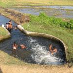 Badetag - ohne die lästigen Krokodile