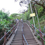 5200 Steps to Adam's Peak...