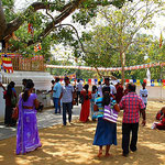 Sri Maha Bodhi-Baum  in Anuradhapura - heilige Stadt und Weltkulturerbe