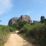 Yala Nationalpark - Elephant Rock