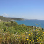 auf der Küstenstraße zurück nach Alghero
