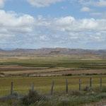 die Halbwüste - Parque Natural de las Bardenas Reales