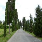 weiter im Süden in der Toscana angekommen
