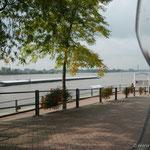 Rees am Niederrhein