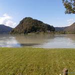 die Schlögener Schlinge (ein 180 Grad-Bogen der Donau)