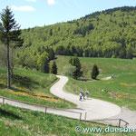 der Weg zu Krunkelbachhütte