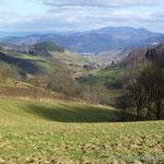Blick über Welschensteinach