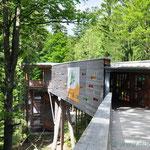 Eingang zum Baum-Wipfel-Weg in Neuschönau