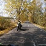 der ungarische Herbst