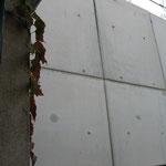 Un beau mur de béton pour la lumière du sud !