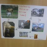 Bauernhofprojekt