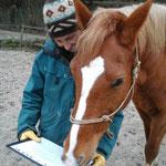 Je prépare une fiche pédagogique pour chaque séance - Fixer des objectifs cohérents avec les capacités du cheval et vos attentes