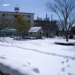 こんなに雪が積もっては多くの方が来られませんでした