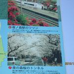 以前は桜で有名な場所です