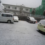 雪が降ってきた!!