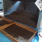 中揉機を改良した酸化発酵を止める温風乾燥機。