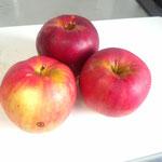 赤いもの、紅玉リンゴ。
