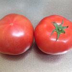 岩崎さんのトマト。