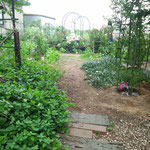 ポーチコの庭。